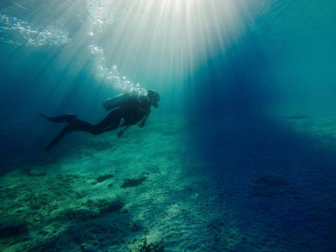 Fernweh underwater